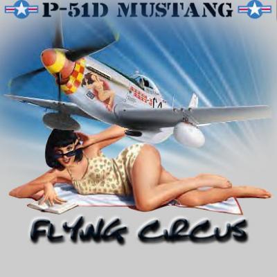 Mustang P51D
