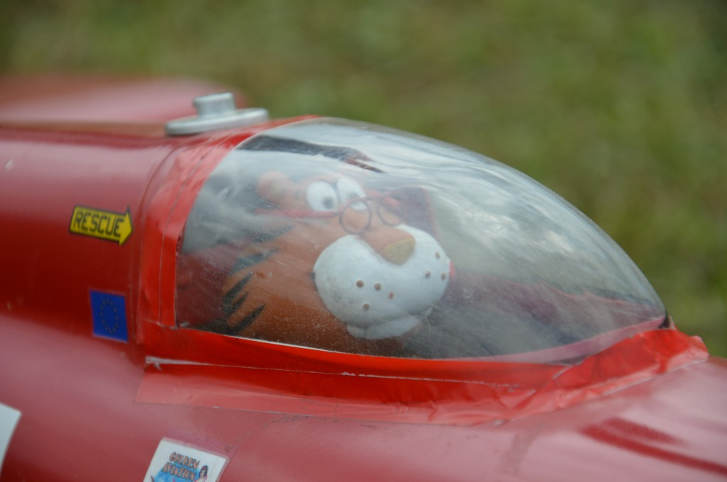 un tigre dans le cockpit ??? ça va grogner pour le N°65..